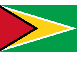 Financial informations about Guyana