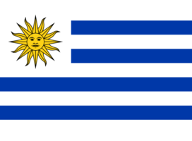 TPCG FINANCIAL SERVICES S.A., Uruguay